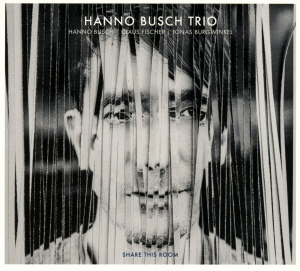 Hanno Busch Trio - Share This Room